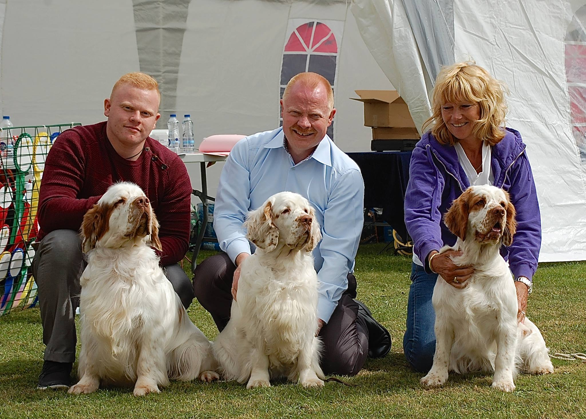 2 Spanielclub Shows in Sabro d. 29. june 2014